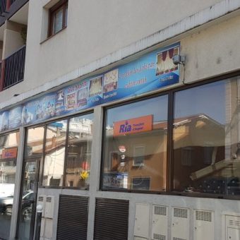 Villeurbanne – 100 rue Léon Blum – Murs de Commerce